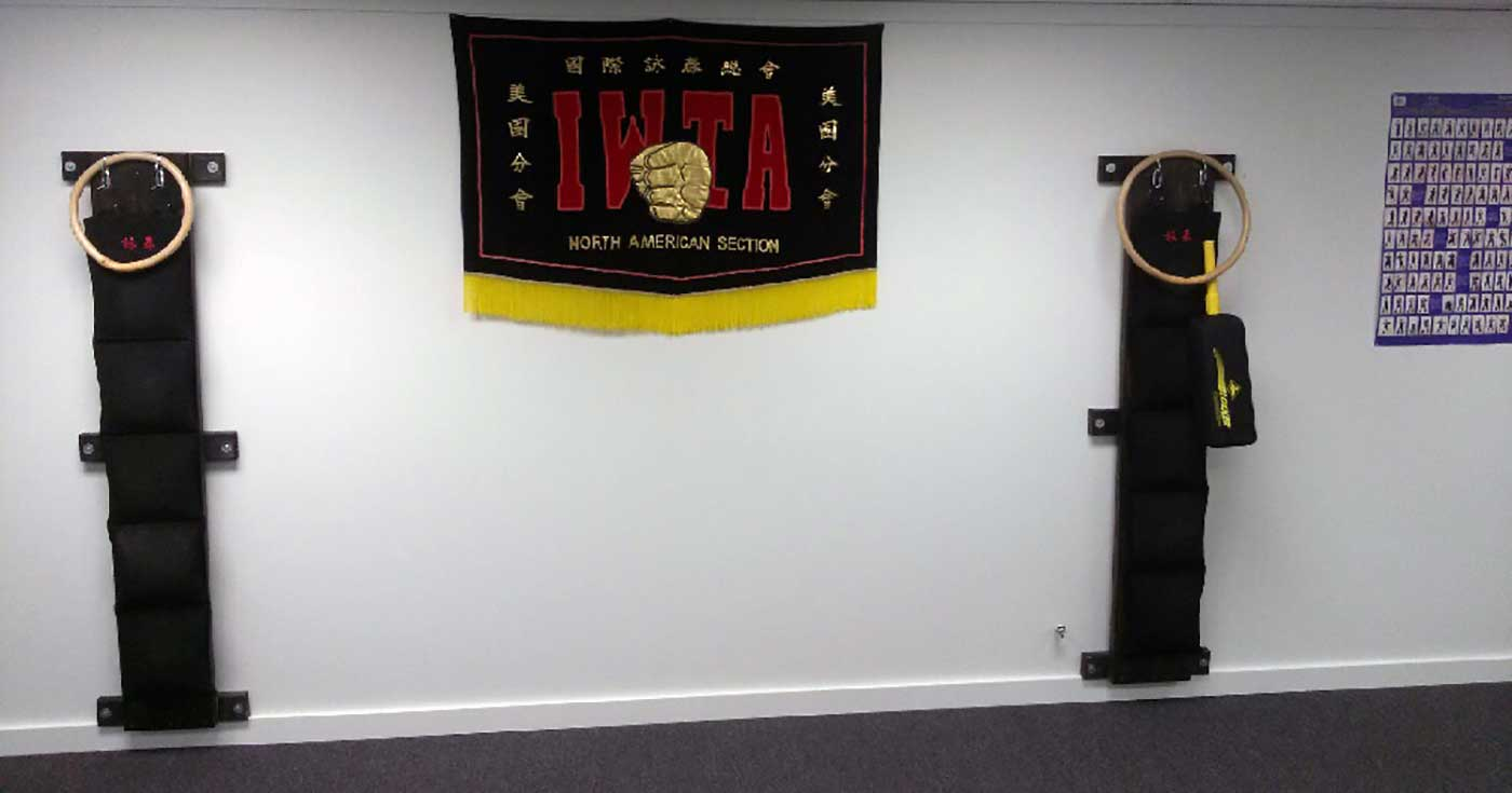 Authentic Wing Tsun of Peoria, Illinois - new martial arts school photo 5